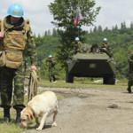 Возможна ли миротворческая миссия в Украине?