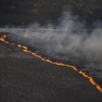 Масштабный пожар в Чернобыльской зоне. Эксперты подозревают поджог