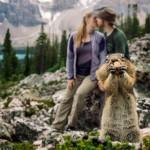 Белка испортила влюбленным фотосессию