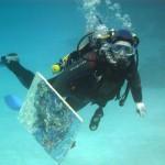 Умер украинский художник, который создавал шедевры под водой