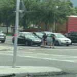 Девушки помогли аллигатору перейти дорогу (видео)