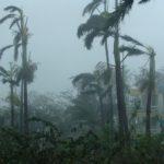 К Флориде приближается мощный ураган. Власти объявляют чрезвычайное положение