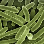 6-летний ребенок заразился плотоядными бактериями. Его мама предостерегает всех родителей