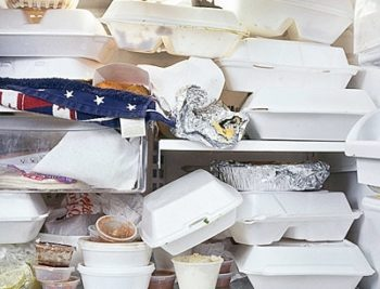 Что в холодильнике у простых американцев (18 фото)