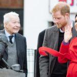 Британские СМИ:  в Букингемском дворце хотят избавиться от Меган Маркл
