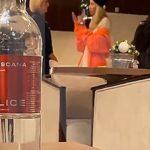 Светлана Лобода устроила скандал в московском аэропорту (видео)