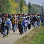 США уменьшили число принимаемых беженцев в 4 раза и это еще не конец