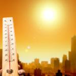 Невиданная жара в США: плавятся дороги, а мидии закипают в ракушках (фото)