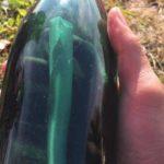 На Аляске обнаружили бутылку с посланием от советских моряков 50-летней давности