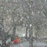 На США надвигается рекордный снегопад, аналогов которому не было 85 лет