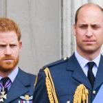 Принц Гарри впервые прокомментировал информации о конфликте с братом