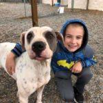 «Ребенок года»: семилетний мальчик Роман из Техаса спас 1300 собак