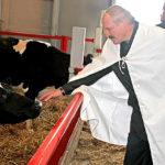 Лукашенко назвал сыр лекарством от коронавируса
