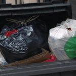Египтянин по ошибке выбросил в мусор 26 тыс. долларов